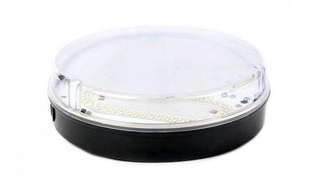 15w LED IP65 Bulkhead Fitting