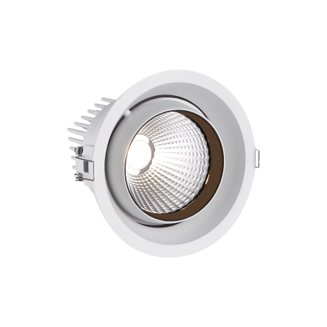 Large Tiltable Round LED Spotlight (STR191)
