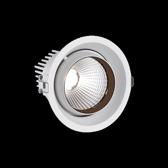 Large Tiltable Round LED Spotlight (STR191)