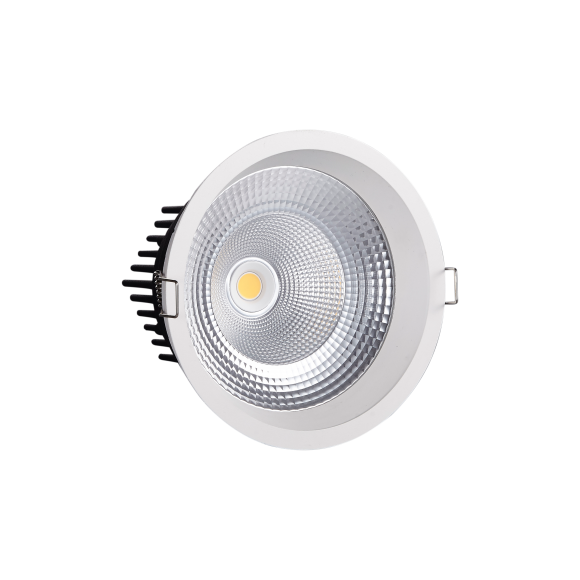 Large Fixed Round LED Downlight (STR291)