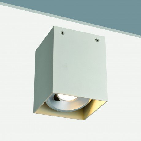20W Large Surface Mounted Square Tiltable LED light fitting