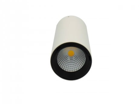 9W LED Surface Mounted Downlight (Polestar)